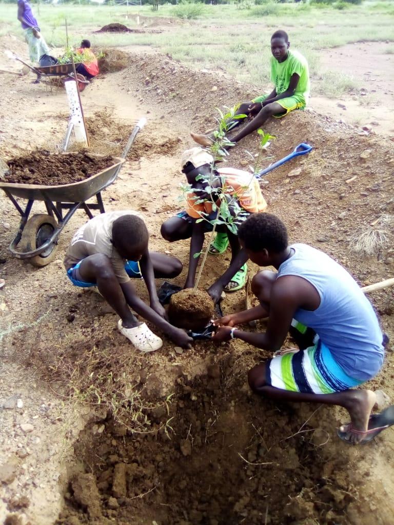 """Estudiantes del proyecto """"Furrows in the Desert"""" plantando un árbol frutal"""