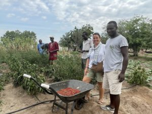 Día Mundial de la Agricultura: Estudiantes de Furrows in the Desert recogiendo la producción de chili de la huerta